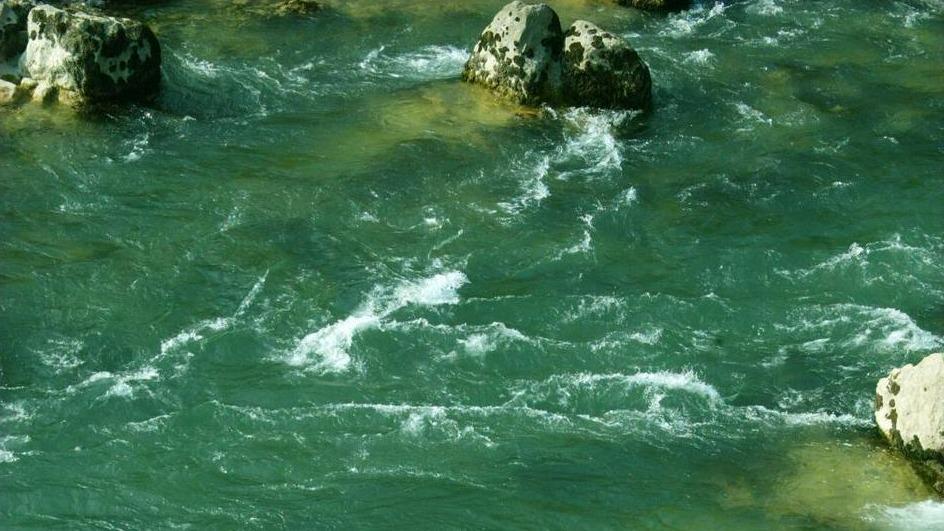 Predčasne volitve o zakonodajnem referendumu o spremembah Zakona o vodah