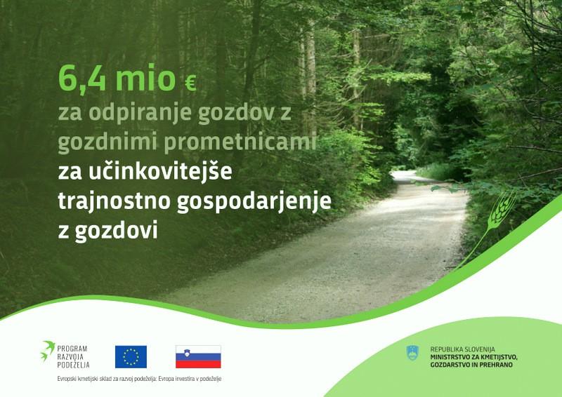 Javni razpis MKGP za naložbe v ureditev gozdne infrastrukture